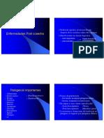 Clase POST cOSECHA111 [Sólo lectura] (1).pdf