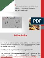BIOQ POLISACÁRIDOS CLASE-convertido.pptx