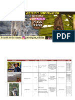 LIVE-SILVESTRE-INSTAGRAM-Kenny..pdf