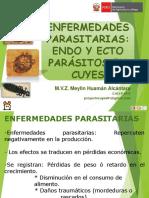 6ENFERMEDADES PARASTARIAS EN CUYES -CAJAMARCA JUNIO2018