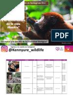 Live_Silvestre-Semana-Biodiversdad-2020[1]
