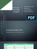 Sustentacion circuitos II 3 (1).pptx