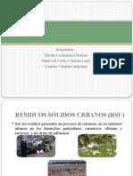 FUNCIÓN MUNICIPAL EN EL TRATAMIENTO DE RESIDUOS URBANOS EN LA CIUDAD DE LIMA