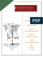 Derecho Internacional Pùblico_Anàlisis_U_2_A_9
