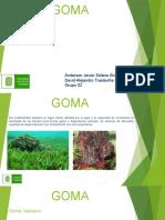 Exposición Estructuras Goma