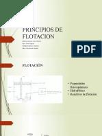 Equipo_1_principios_flotacion.pptx