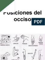 posiciones del occiso (1)