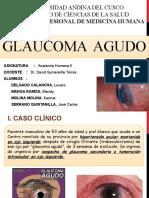 CASO-CLÍNICO-GLAUCOMA-ÚLTIMO
