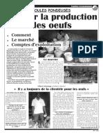 Poules_pondeuses