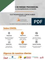 5. Cotizacion Cincel.pdf