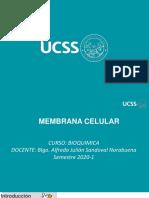 MEMBRANA CELULAR.pdf
