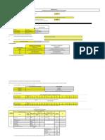 formato8a_directiva001_2019EF6301 (1)
