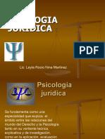psicologia juridica ambitos de actuacion 2