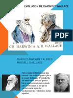 TEORIA DE LA EVOLUCION DE DARWIN Y WALLACE