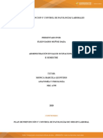ACTIVIDAD ANATOMIA.docx