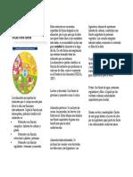 Alimentos y nutrientes folleto