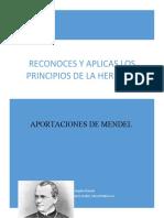 APORTACIONES DE MENDEL.docx