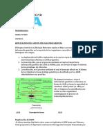 Replicacion de ADN en procariotas (Tarea)