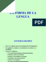 LA FORMA DE LA LENGUA.ppt