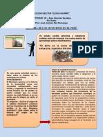 CLASE  5  HISTORIA DE LOS MUNICIPIOS EN EL PERU
