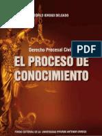 Derecho Procesal Civil. Proceso de Conocimiento. Teofilo Idrogo Delgado