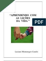 Aprendendo com as lições da Vida - Prof. Luciano Castello - FGV