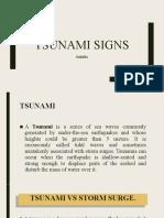 Tsunami-Signs