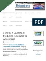 Schemi a Cascata di Medicina [Esempio di Anatomia] | Metodo Universitario
