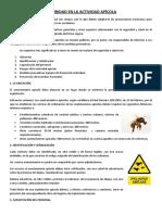 TEMA 0 PRL EN APICULTURA.docx
