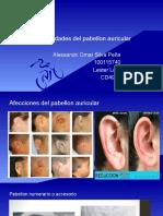 Conducto auditivo externo.2.0