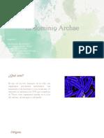 Dominio Archae