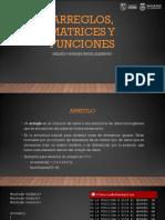 ARREGLOS, MATRICES Y FUNCIONES