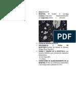 DOC-20180216-WA0006
