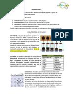 guia_de_fluidos.pdf