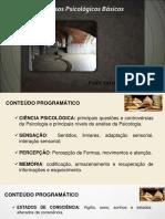 APOSTILA UNIP PPB - Processos Psicológicos Básicos
