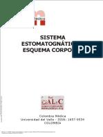 Sistema_estomatognático_y_esquema_corporal_----_(SISTEMA_ESTOMATOGNÁTICO_Y_ESQUEMA_CORPORAL) 14