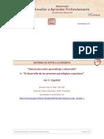 procesos-psciologicos-superiores_vygotski