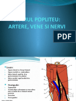 4-SPATIUL POPLITEU.pptx