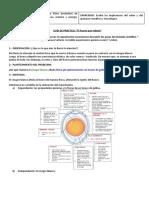 Práctica huevo que rebota - Identificación de  los pasos del método científico.docx