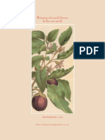 Seed Portfolio