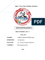 preinformeMICROII.docx