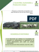 3. Desarollo Sostenible y PML 2019 modf.ppt
