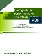 1- Pilotage et management de la performance
