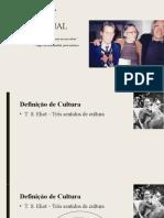 CORRIGIDO - PALESTRA - Cultura e a dominação populacional [Salvo automaticamente] (1)