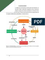 Ciclo  de las rocas.pdf