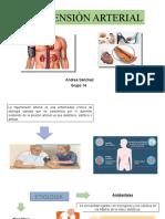 hipertencion arterial Andre