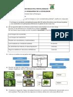 Actividad #2 Reinos Fungí y Plantae.docx