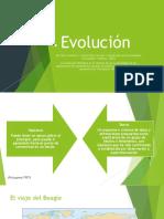 2. Evolucion