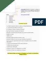 Produccion final AMII (1).docx
