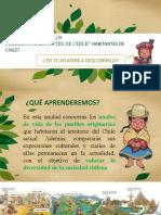 Presentación Pueblos Originarios de Chile